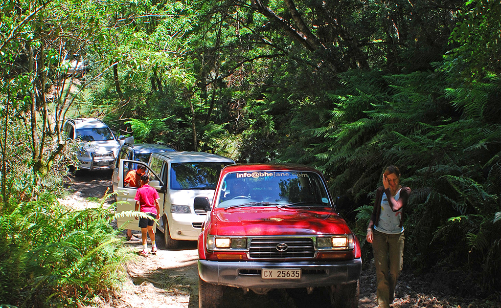 bhejane 4x4 adventure self drive guided tours tours south africa garden route knysna 1